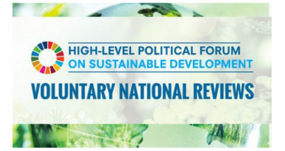 Q&A for Voluntary National Reviews at the 2021 HLPF